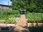 The farm in June!