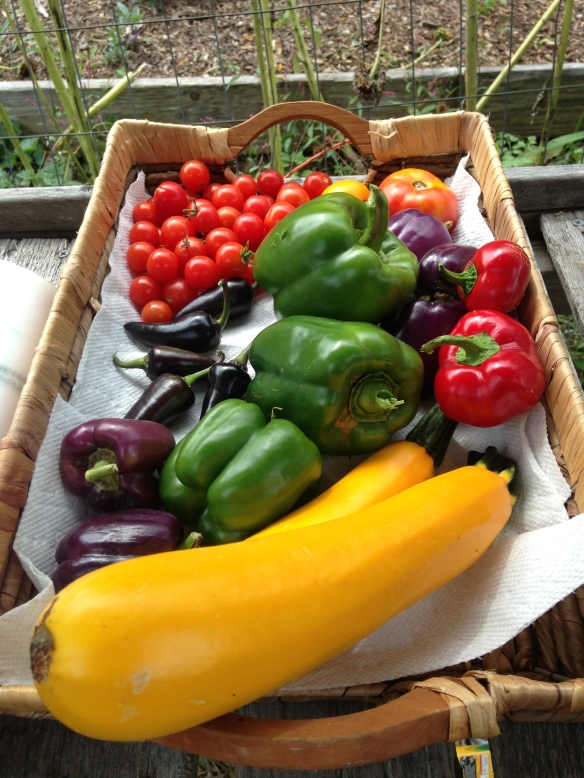 peppers, zucchinis and tomatoes